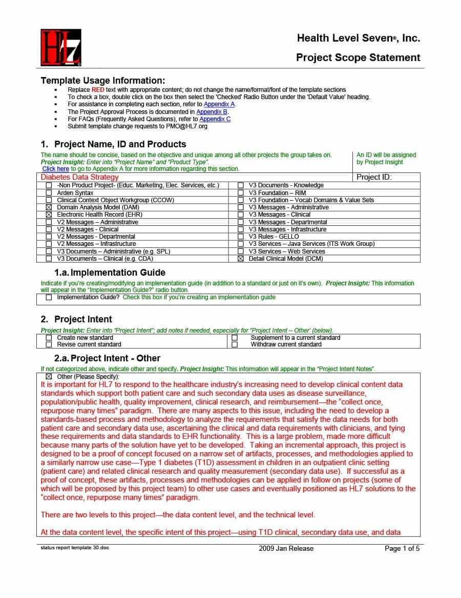 40+ Project Status Report Templates [Word, Excel, Ppt] ᐅ Within Project Implementation Report Template