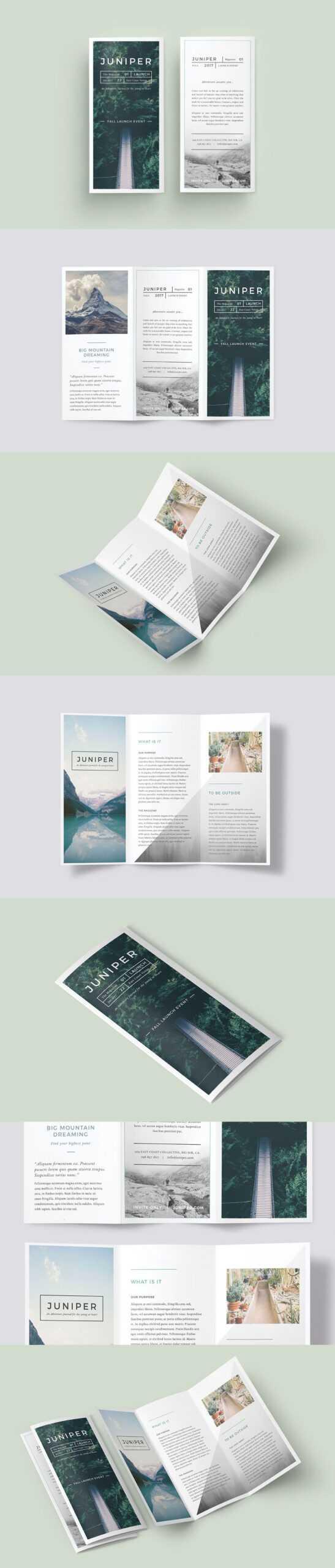 A Beautiful Multipurpose Tri-Fold Dl Brochure Template throughout Tri Fold Brochure Template Indesign Free Download
