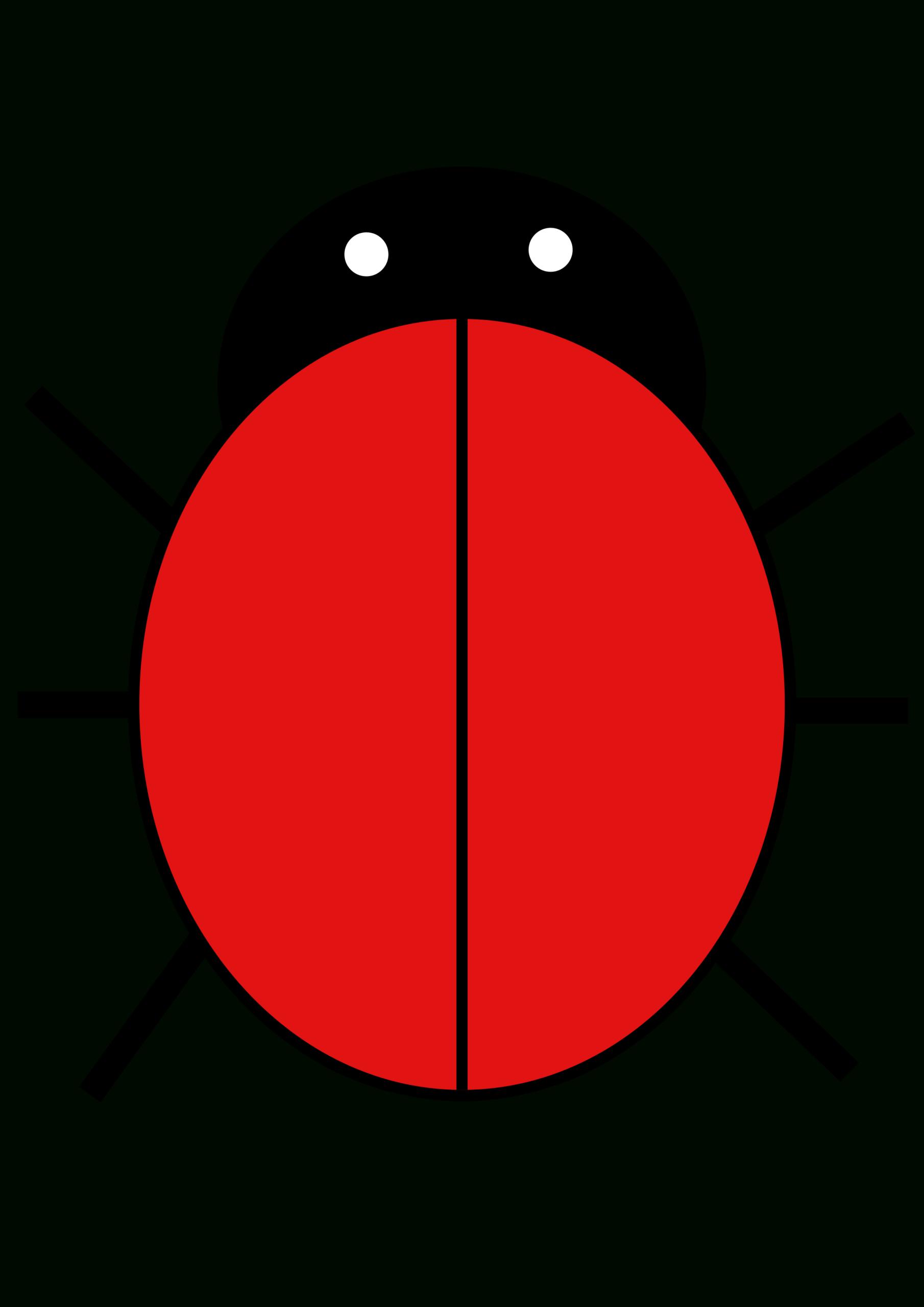 Best Photos Of Blank Ladybug Template Printable - Ladybug Within Blank Ladybug Template