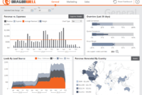 Dashboard & Reporting Samples – Dundas Bi – Dundas Data within Market Intelligence Report Template