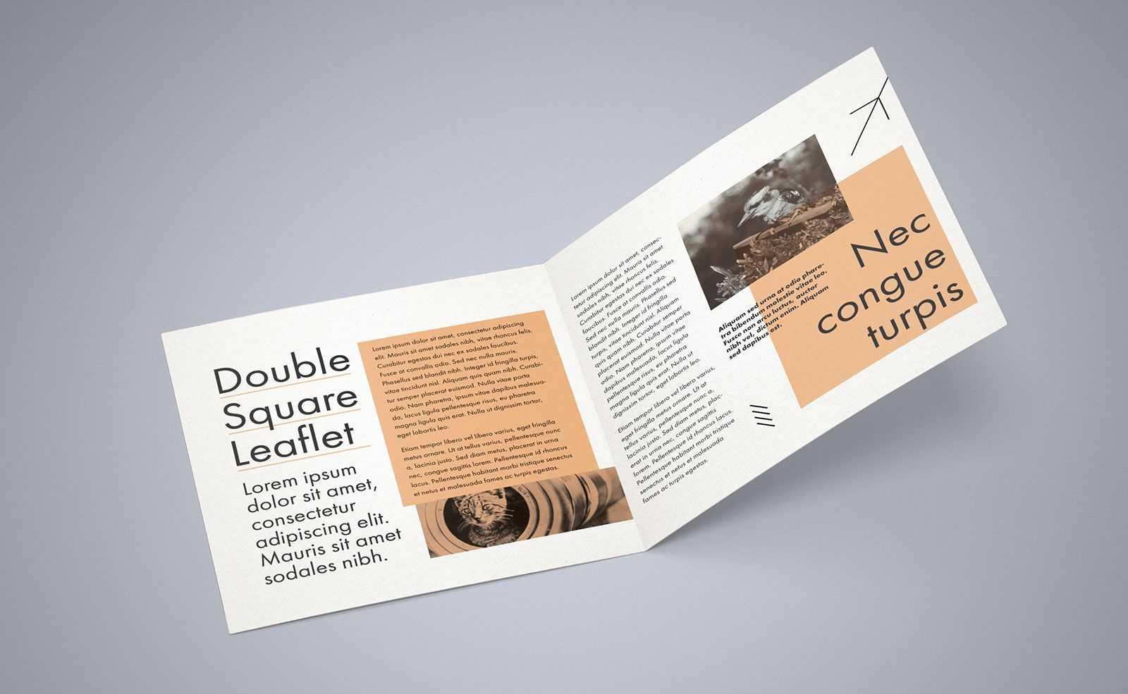 Free Square Bi Fold Brochure Mockup Psd File 2 | Bi Fold Inside 2 Fold Brochure Template Free