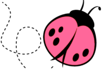 Lady Bug Template – Major.magdalene-Project for Blank Ladybug Template
