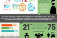 Nonprofit Annual Report As An Infographic (Summer Aronson regarding Nonprofit Annual Report Template