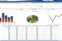 Oracle Airlines Data Model Sample Reports for Sales Analysis Report Template