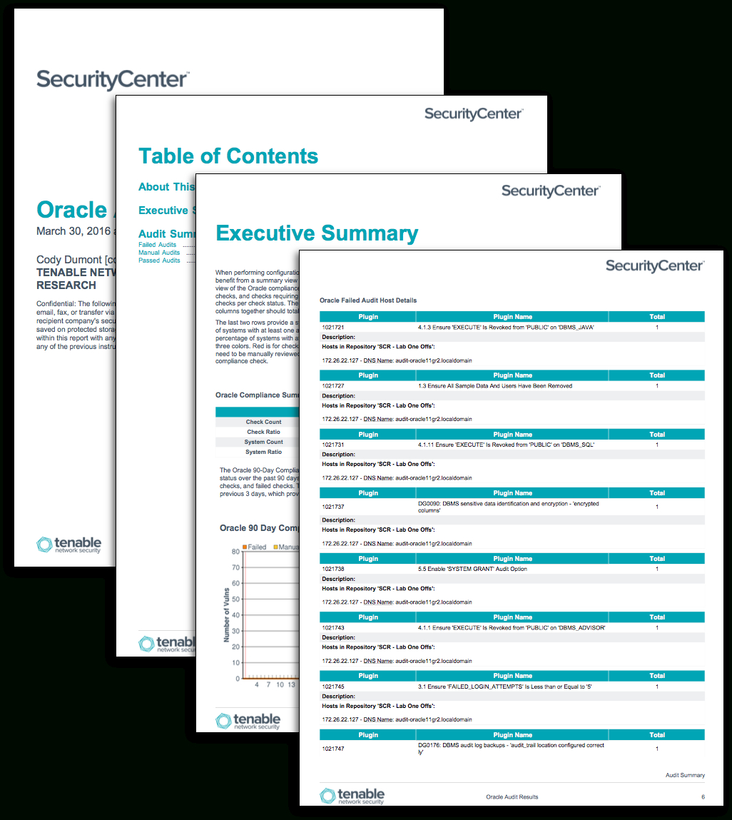 Oracle Audit Results - Sc Report Template | Tenable® Intended For Security Audit Report Template