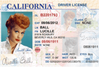 Pinleandra Harrell On Projects To Try | Drivers License inside Blank Drivers License Template