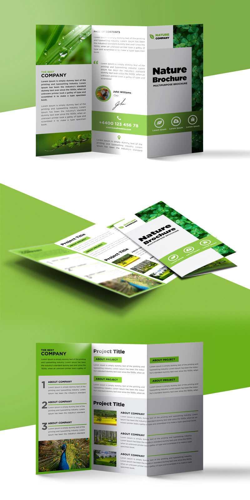 Tri Fold Brochure Template A4 Free #1502 for Tri Fold Brochure Template Indesign Free Download